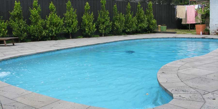 canterbury pool renovation dolphin pools. Black Bedroom Furniture Sets. Home Design Ideas